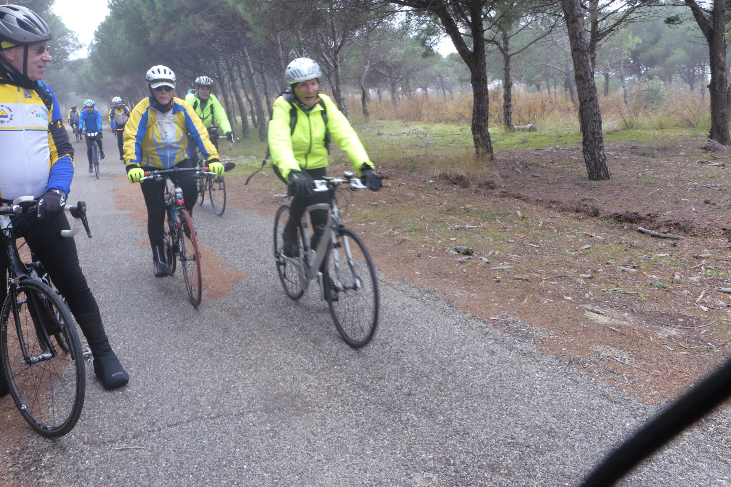 Vélo LOISIR